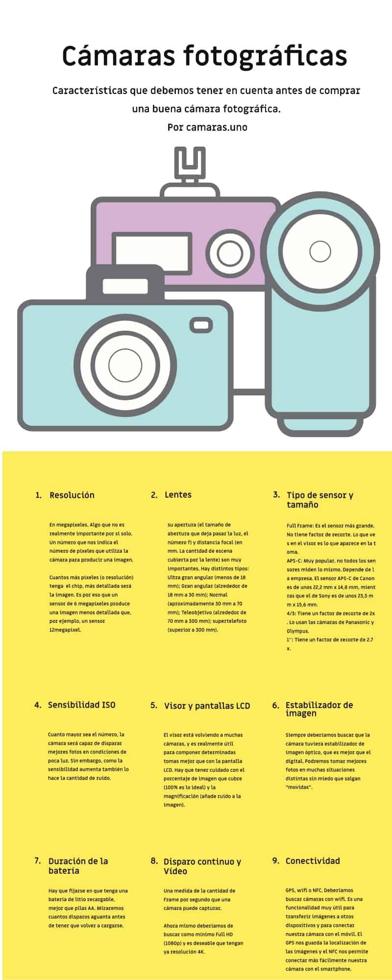 Infografia: Características que debemos tener en cuenta antes de comprar una buena cámara fotográfica